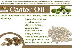 Essential Oils For Hair Loss Ayurvedic Health Benefits Of Castor Oil Ayurvedic Oils
