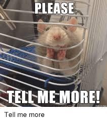 Please Tell Me More Meme - please tell me more more meme on me me