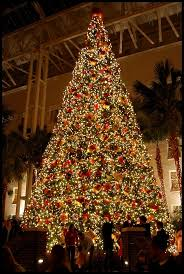 1033 best christmas trees images on pinterest christmas time