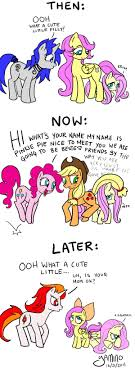 Mlp Fluttershy Meme - fluttershy fluttershy mlp fim pinterest fluttershy mlp and pony