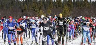 cross country skiing 150 km of ski trails in swedish mountains