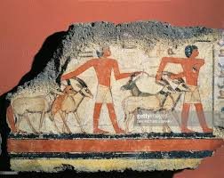 fragment of wall painting depicting oryx and gazelle hunt in egyptian civilization old kingdom dynasty v fragment of wall painting depicting oryx and