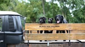architectural salvage black dog salvage salvage dawgs