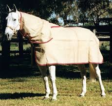 Bucas Irish Leg Warmer Riding Rug 18 Best Horse Blankets Images On Pinterest Blankets Horse