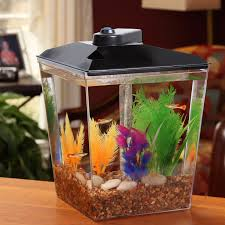 aqua culture 1 gallon aquarium starter kit 7 5