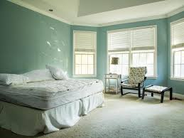 Traditional Master Bedroom Design Ideas - traditional master bedroom with masculine and feminine style hgtv