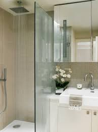 Small Shower Door Small Shower Ideas For Bathrooms With Limited Space
