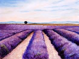 lavender fields u2013 oil painting fine arts gallery original fine