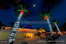 bar 2839 christmas christmas lights christmas trees christmas palm