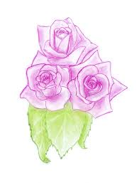 pink roses sketch stock illustration image of bouquet 12271358