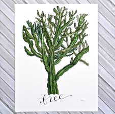 cactus home decor home decor decorwithalittlelove