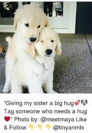 Give Me A Hug Meme - 25 best memes about big hug big hug memes