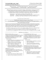 It Project Manager Resume Template It Project Manager Resume Sample With Good Project Manager Resume