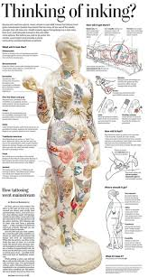 Human Anatomy Integumentary System Unit 2 Integumentary System Miss L Williams
