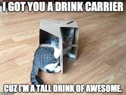 Hipster Kitty Meme - hipster kitty imgflip