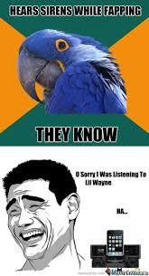 Paranoid Parrot Memes - rmx paranoid parrot by dadevilslaya9 meme center