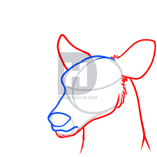 how to draw a deer head step by step drawing guide by