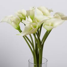 Calla Lily Flower Calla Lily Flower Arrangement To Try Flower
