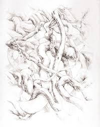 vine sketch matthew harding