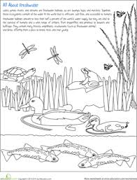 color the freshwater habitat science worksheets habitats and