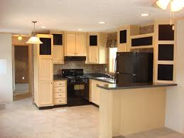 dark kitchen cabinets with black appliances unique white ceiling light small dark wood cabinet kitchens with
