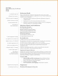 beautiful resume templates beautiful resume templates best of free resume templates beautiful