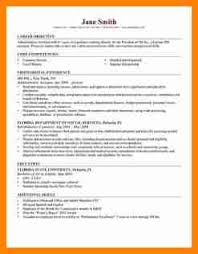 It Professional Resume Sample by 8 Cv Format For It Professional Mail Clerked