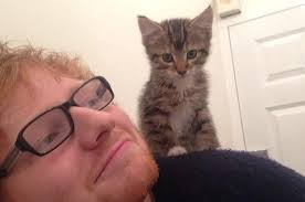 ed sheeran perfect video actress ed sheeran releases his video for perfect and you ll love it kj103