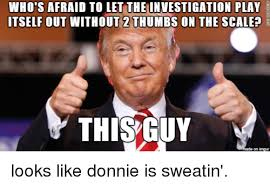 Afraid Meme - who s afraid to let the investigation play itself out without 2