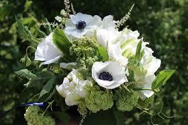 how to order shady grove gardens u0026 nursery florist and flower