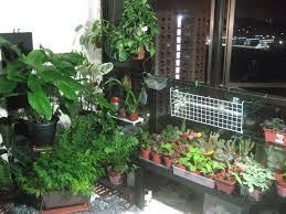 Indoor Kitchen Garden Ideas Photos Indoor Garden Design Ideas 20 Terrific Indoor Garden Ideas