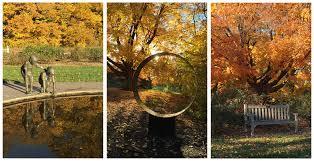 mn landscape arboretum blog jw real estate group