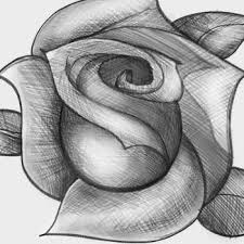 70 best how to draw a rose images on pinterest a fashion