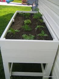 best 25 vegetable planters ideas on pinterest vegetable garden