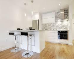 Modern Condo Kitchen Design 13 Best Condo Images On Pinterest Home Ideas Home