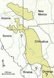 Map Of Chihuahua Mexico by Chiricahua Leopard Frog Tucson Herpetological Society