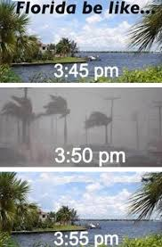 Florida Meme - how the weather works in florida the meta picture