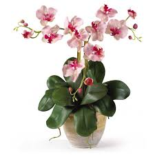 Decorative Floral Arrangements Home by 20 Inch Triple Mini Silk Phalaenopsis Orchid Arrangement In