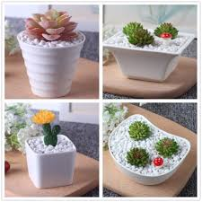 small ceramic flower pots sheilahight decorations