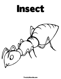 insect coloring pages 4 nice coloring pages kids