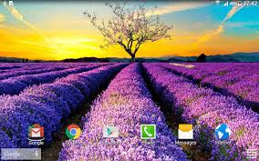 spring nature live wallpaper android apps on google play