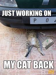 Mechanic Meme - 95 best car meme images on pinterest car humor funny stuff and