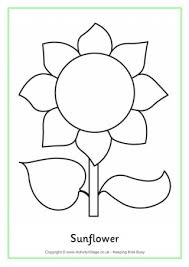 Sunflower Colouring Page Sunflower Coloring Page