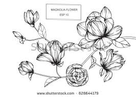 flower sketch download free vector art stock graphics u0026 images