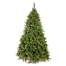 trees on sale 15 30 in sears