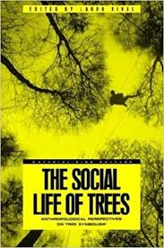 the social of trees anthropological perspectives on tree