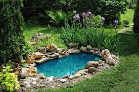 Garden Pond Designs Pictures