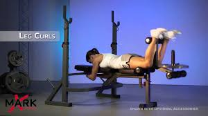 Workouts With A Bench Xmark Olympic Bench With Leg U0026 Preacher Xm 4422 Complete Body