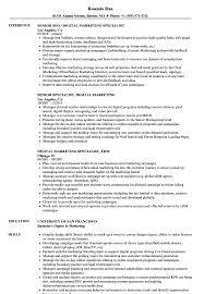 digital marketing resume specialist digital marketing resume sles velvet