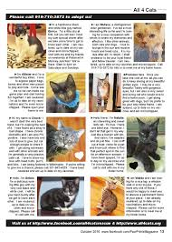 october 2016 by pawprints magazine issuu